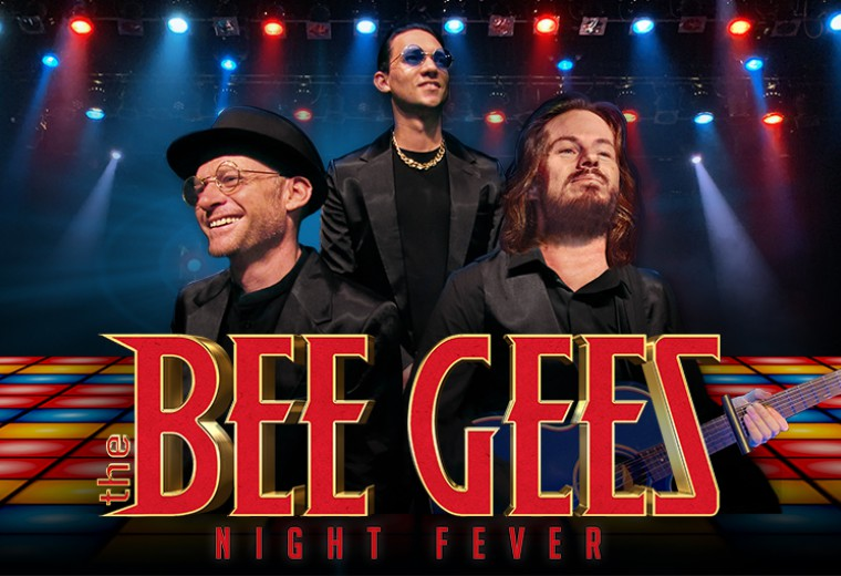The Bee Gees: Night Fever